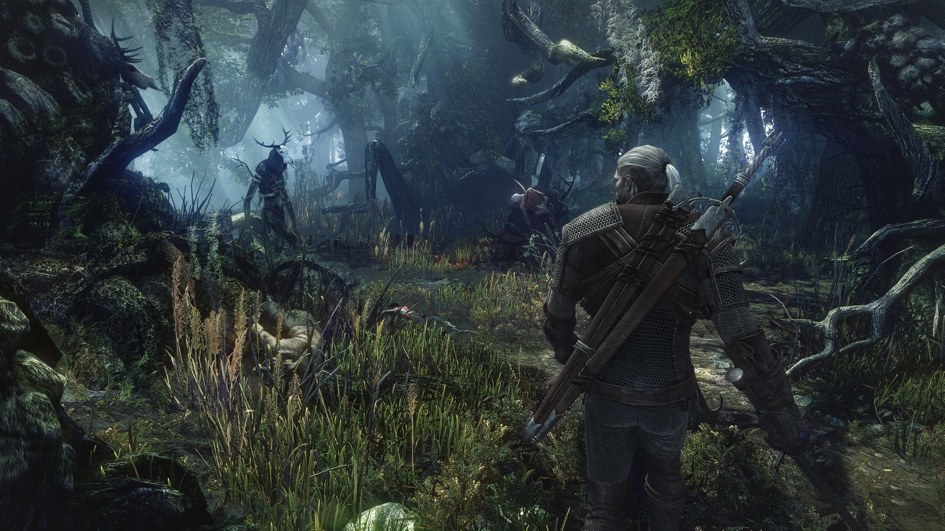 witcher3forest
