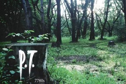 P.T._cover