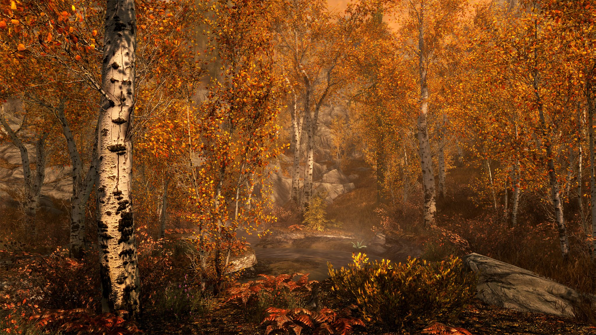 SkyrimSE_FallForest_FULL