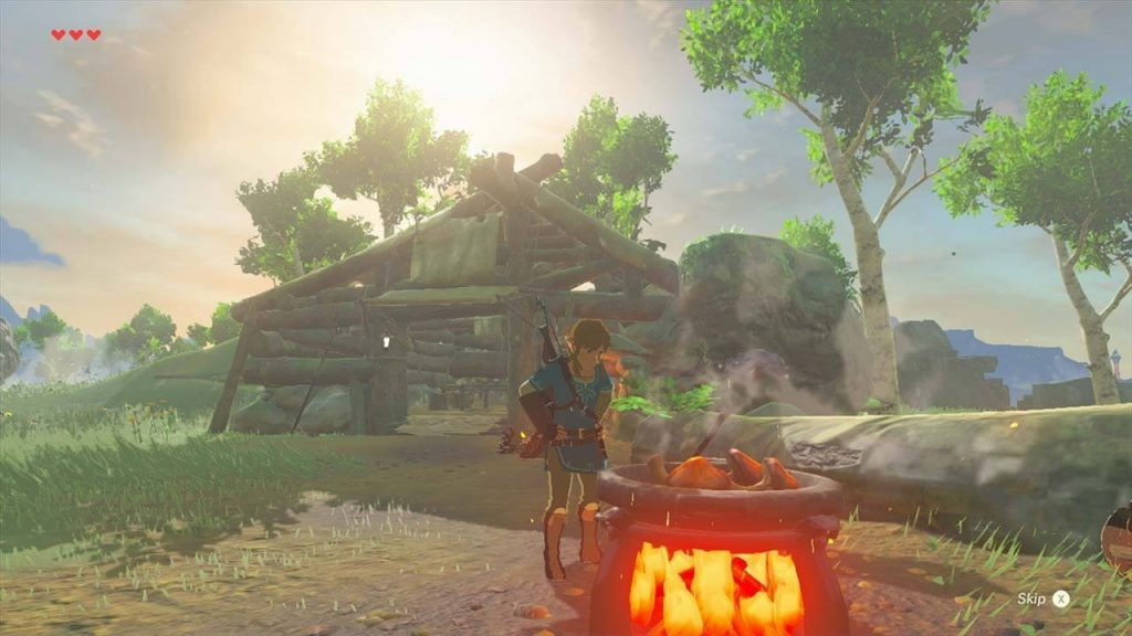 The Legend of Zelda Breath of the Wild Cooking Mushrooms