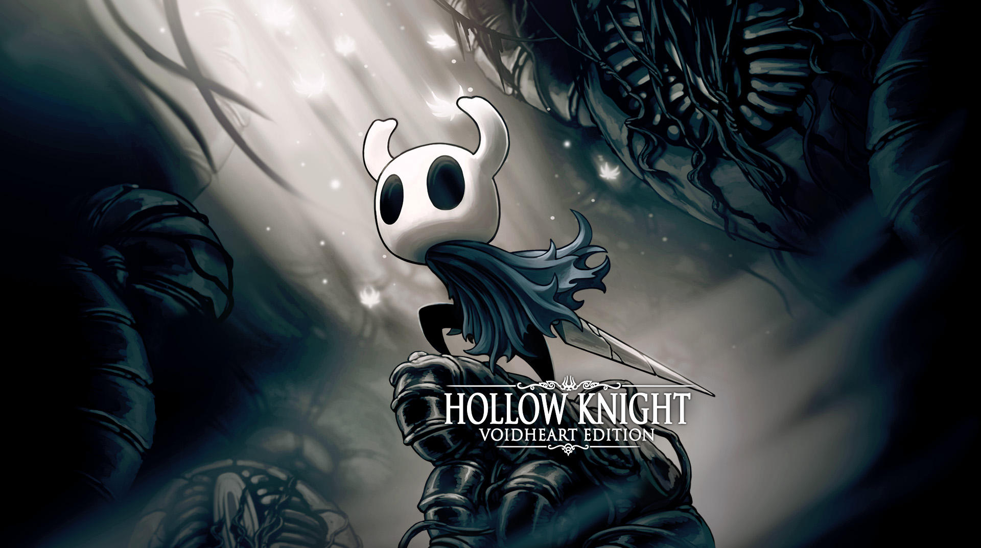 Hollow knight: Voidheart edition image